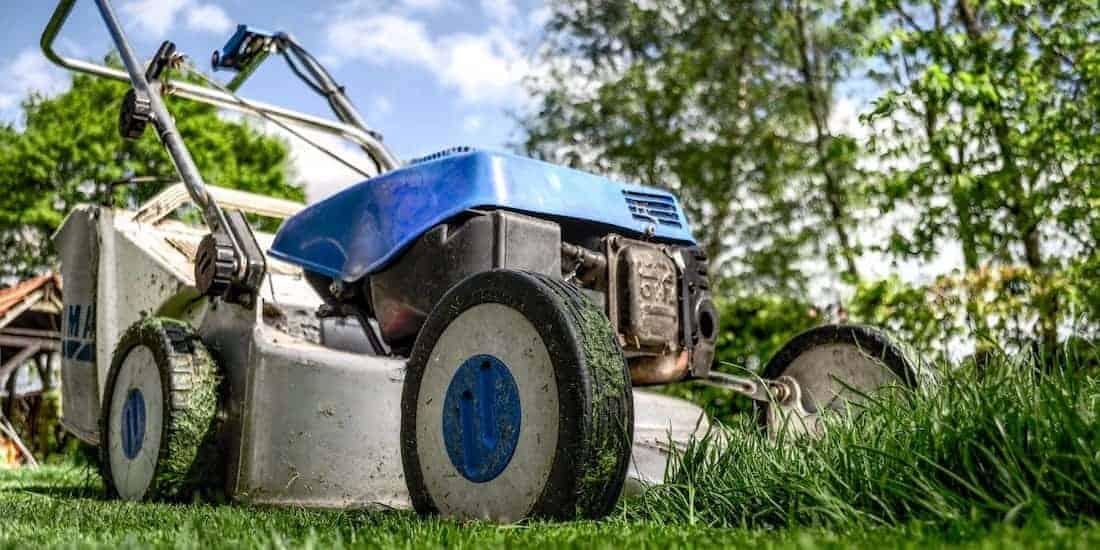 Backyard Mike - Outdoor Power Equipment - Header