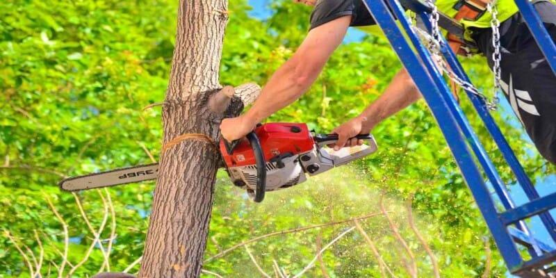 best 18 inch chainsaw
