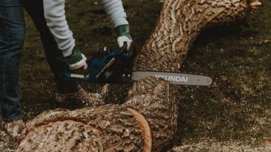 testing chainsaw on wood